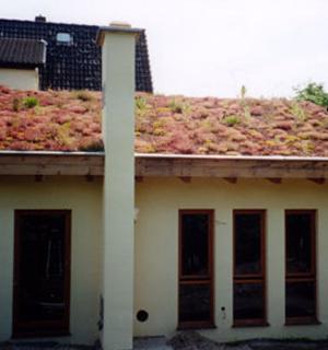 Ein begrüntes Dach auf einem weißen Haus