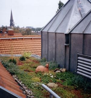 Ein begrüntes Dach mit Deko-Objekten