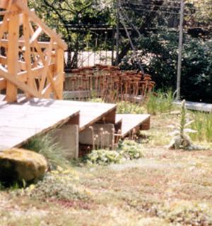 Ein begrüntes Dach mit einer Holztreppe darauf