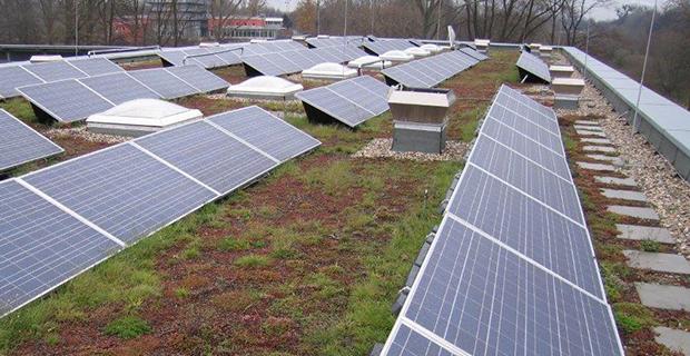 Ein begrüntes Solardach