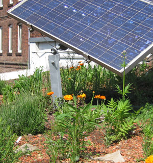 Ein begrüntes Firmendach mit Solarzellen